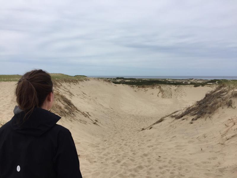 Cynthia_dunes