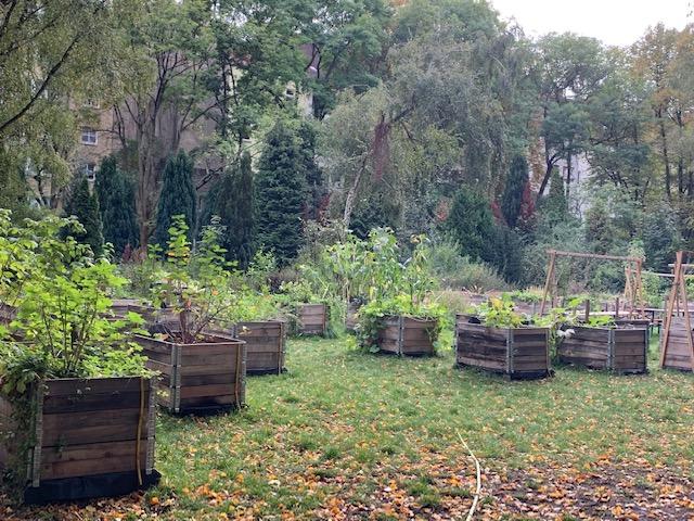 Neukoln_garden_Beds