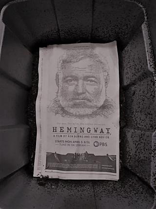 Hemingway_worms